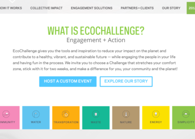EcoChallenge Home Section